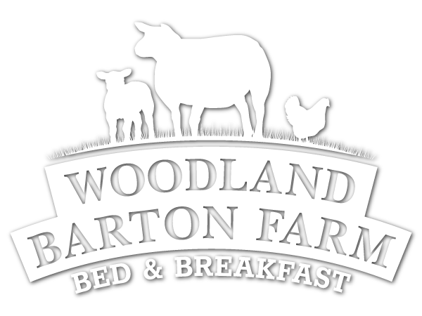 Woodland Barton Farm Bed and Breakfast